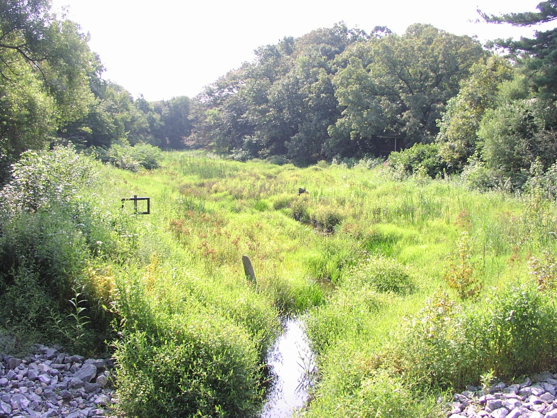 Upper Raccoon Creek Watershed